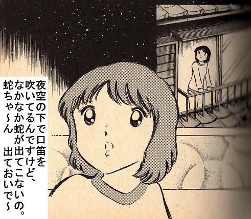キャプ翼Twitter (SANAE).jpg