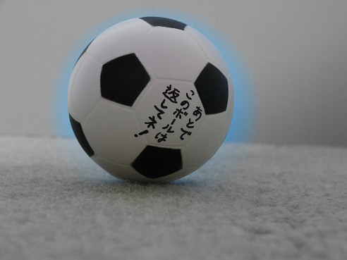 レアグッズ:挑戦状ボール裏面.PNG